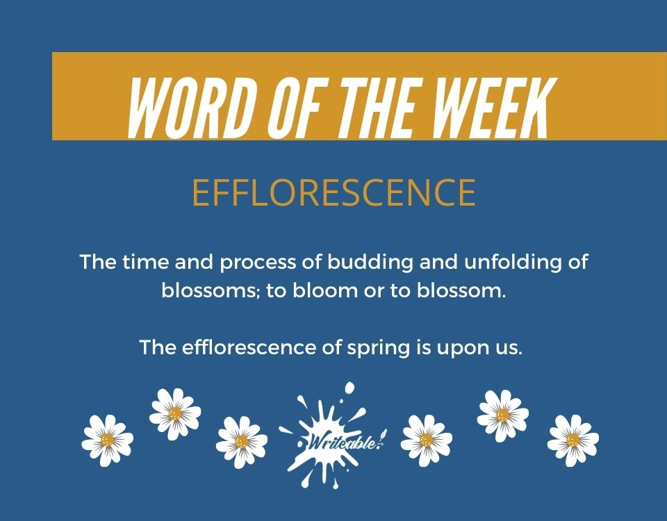 Word of the Week: Efflorescence