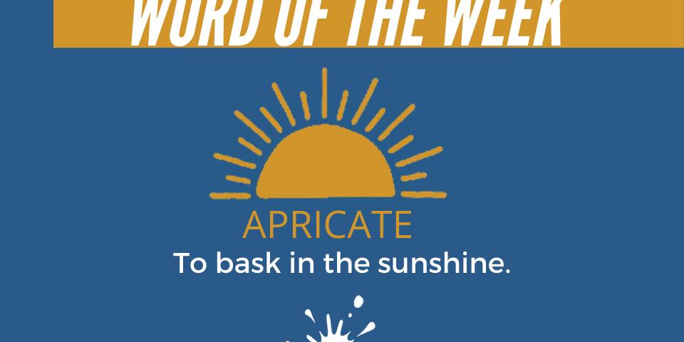 Word of the Week: Apricate